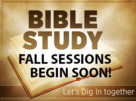 Image result for New fall bible studies