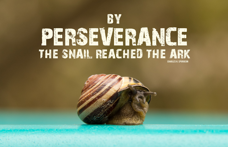 Perseverance Definition and Meaning - Bible Dictionary
